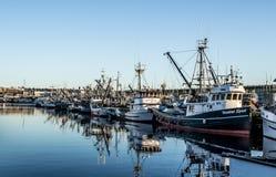 I seiners di borsa hanno attraccato al terminale del ` s del pescatore a Seattle Washington fotografie stock libere da diritti