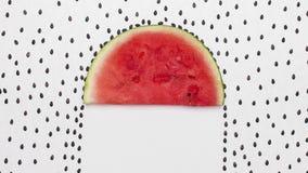 I semi dell'anguria che piovono sulla fetta del melone, fermano l'animazione di moto illustrazione di stock