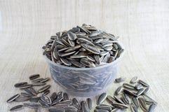 I semi di girasole dentro vedono attraverso la tazza, su tela immagini stock