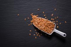 I semi di lino organici di concetto sano dell'alimento sull'ardesia nera lapidano il pla Immagine Stock Libera da Diritti