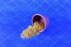 I semi di sesamo si sono svegliati da una piccola tazza fotografia stock