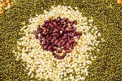 I semi hanno spanto una lamiera piana Fotografia Stock