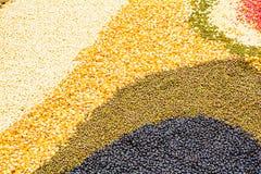 I semi hanno spanto una lamiera piana Immagini Stock Libere da Diritti