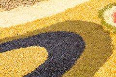 I semi hanno spanto una lamiera piana Fotografia Stock Libera da Diritti