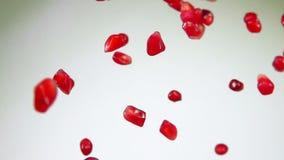 I semi maturi rossi del granato volano su un fondo bianco video d archivio