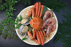 Marine products helping of various kinds of dishes. I served an abalone, a deep red snow crab, red prawns to a colander Stock Photos