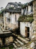 I slotten - Palenque - Chiapas Royaltyfri Fotografi