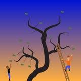 I soldi si sviluppano sugli alberi Immagini Stock Libere da Diritti