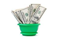 I soldi si sviluppano in un flowerpot Immagine Stock
