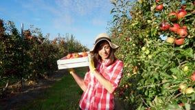 I solens strålar går den kvinnliga bonden i plädskjorta och hatten mellan raderna av äppleträd hon rymmer asken med nytt arkivfilmer