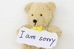 I am sorry message card and teddy bear. On background white royalty free stock photo
