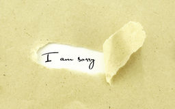 I AM SORRY. Text I AM SORRY appearing behind torn light brown envelope royalty free stock photos