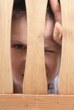 I spy. Royalty Free Stock Image