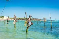 I Sri Lanka fiskar lokala fiskare i unik stil Fotografering för Bildbyråer