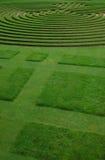 i stånd klippt lawn Royaltyfria Foton