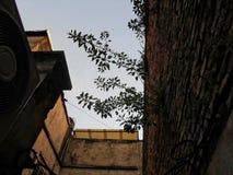 I staden arkivfoto