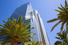 I stadens centrum Kalifornien för LALos Angeles horisont palmträd Royaltyfria Bilder