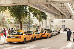 I stadens centrum miami taxar standen Royaltyfri Bild