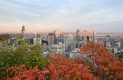 I stadens centrum Montreal Arkivbilder