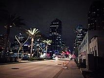 I stadens centrum San Diego California Royaltyfri Bild