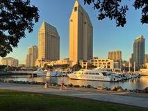 I stadens centrum stadshorisont med joggeren, San Diego, Kalifornien, USA Arkivbild