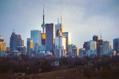 I stadens centrum Toronto horisont som ser västra på solnedgången arkivbild