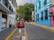 I STADENS CENTRUM träd Bluehouse Villahermosa för gata royaltyfria bilder
