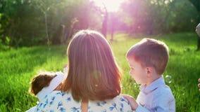 I strålarna av solen mot ljuset på solnedgången i sommaren i parkera en ung moder, blonda slag för en kvinna lager videofilmer