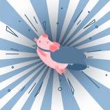 i superhombre del ` m Ejemplo lindo del cerdo de la historieta Imagen de archivo libre de regalías
