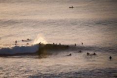I surfisti prendono le onde di sera nell'oceano immagini stock libere da diritti