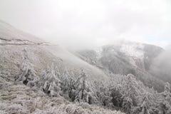 I Taiwan Nantou Hehuan bergsnö Arkivbilder