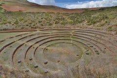 I terrazzi agricoli inca moray Valle sacra Regione di Cusco peru fotografia stock libera da diritti