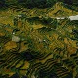 I terrazzi del riso Fotografie Stock