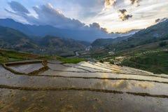 I terrazzi del riso nel distretto di sapa di stagione delle pioggie, Lao Cai Provinc Fotografia Stock