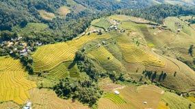I terrazzi del riso più bei a poco villaggio dei terrazzi di rotolamento del riso fotografia stock