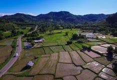 I terrazzi e l'agricoltura del riso hanno archivato della campagna Fotografie Stock Libere da Diritti