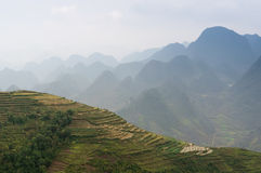 I terrazzi sul pietra-plateau di Dong Van, Viet Nam Fotografie Stock