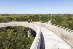 I terreni paludosi osservano da una torre di osservazione fotografie stock