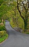 I tgoes del vicolo del paese di bobina attraverso gli alberi e hedgeros con le foglie verdi fertili immagine stock libera da diritti