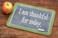 I am thankful for today. Positive words on a slate blackboard against red barn wood stock photos
