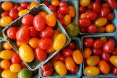 I tomates della prugna del bambino in un cuore hanno modellato la ciotola Immagine Stock