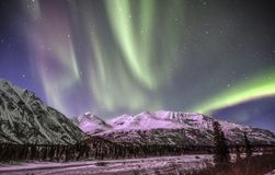 Northern lights in Denali Alaska Royalty Free Stock Photography
