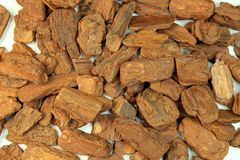 I took Wood chips used for gardening for backgrounds. royalty free stock photography