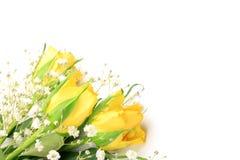 Yellow rose and haze grass Stock Photo