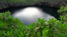 I tori accumulano o Tori Ike nell'isola di Shimoji, Okinawa, di mattina stock footage