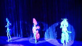 I transsessuali esegue il dancing alla manifestazione di alcazar video d archivio