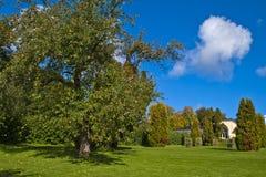 I trädgården av den röda herrgården Arkivfoto