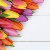 I tulipani fiorisce in primavera, Pasqua o la festa della mamma sul bordo di legno Fotografie Stock Libere da Diritti