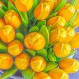 I tulipani gialli artificiali si chiudono su un fondo con i tulipani sboccianti Immagine Stock