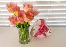 I tulipani rosa in piena fioritura in vaso con la scatola di caramella del biglietto di S. Valentino sono immagine stock libera da diritti